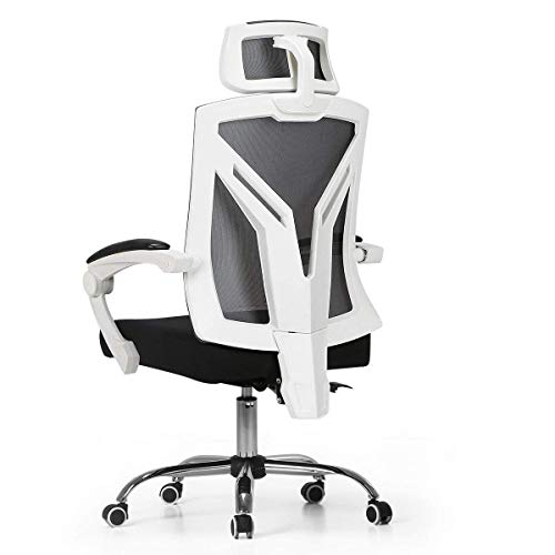 Admirable Computer Chair White Mesh Buyers Guide For 2020 Balzi Reviews Download Free Architecture Designs Grimeyleaguecom