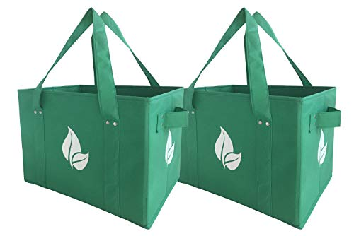 Recycling Box Green (Reusable Grocery Shopping Box Bag Deluxe Set Large Foldable Collapsible Box Tote with Extra Long Handles Reinforced Bottom and Sides in Eco Green Color (Set of 2))