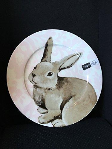 Ciroa Dinner Plates 4 Easter Pink Bunny Rabbit