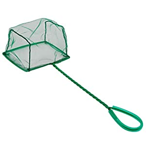 Pawfly Aquarium Fish Net Set Fish Catch Nets with Plastic Handle 4