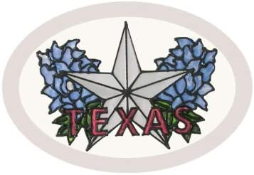 Silver Creek Texas Star Painted Glass Sucatcher O-023