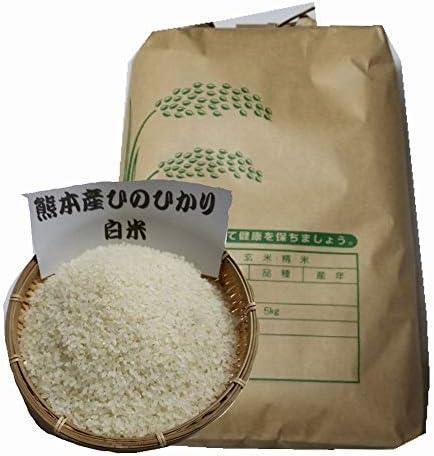 氷川清流米 白米 5kg / 令和元年 熊本県産 ひのひかり 10割使用