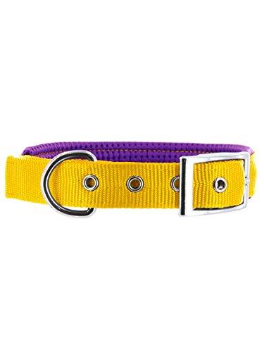 Kakadu Pet Orbit Padded Nylon Dog Collar, 1-Inch by 20-Inch, Yellow with Purple Trim