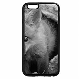 iPhone 6S Plus Case, iPhone 6 Plus Case (Black & White) - Cute red poodle