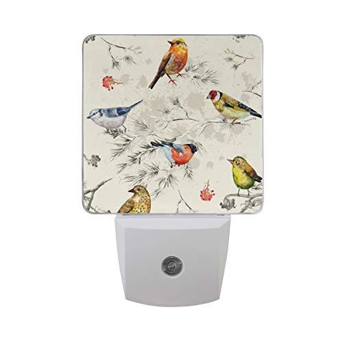 Naanle Retro Bird LED Plug-in Night Light, 2 Pack, Night Light Lamp Emergency Lighting with Dusk to Dawn Automatic Sensor for Hallway Bedroom Bathroom Kitchen