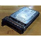 Seagate - 300GB SCSI U320 10K RPM 80PIN/SCA DELL LABELED