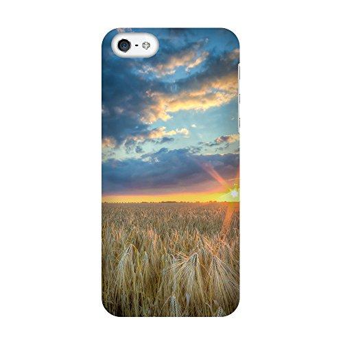 iPhone 5/5S Coque photo - Coucher de soleil dans les céréales