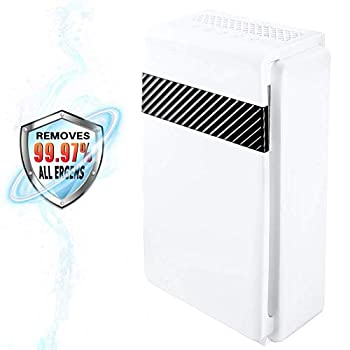 Image of Home and Kitchen Secura Air Purifier for Home True Hepa Filter Ionizer Quiet 5-in-1 Air Cleaner for Bedroom Large Room Dust Allergies Smoke Pets Hair Dander Pollen Odor Eliminator
