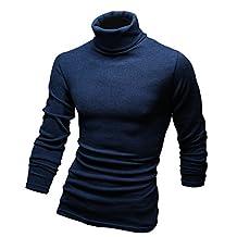 Wizikorea Men's Winter Knit Turtle Neck Tee Polo Neck Sweater NMD214N