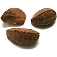 "Brazil Nuts, ""Top Quality"" In shell Polished Large (10 lbs.) by Presto Sales"