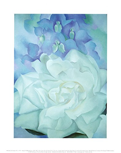 (11x14) Georgia O'Keeffe White Rose with Larkspur No 2 1927 Art Print Poster