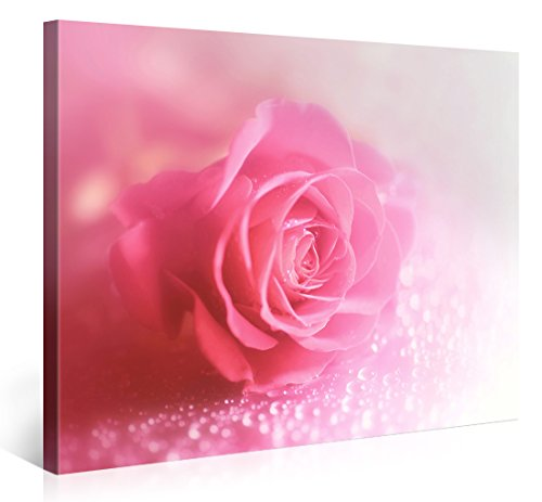Large Canvas Print Wall Art – ROMANTIC PINK ROSE PEARLS – 40x30 Inch Flower Canvas Picture Stretched On A Wooden Frame – Giclee Canvas Printing – Hanging Wall Deco Picture / e6203 (Frame Flower Pearl)