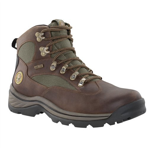 Timberland Chocorua Trail Mid w/Gore-Tex Membrane Boot - Men's Dark Brown Full-Grain 8 ()