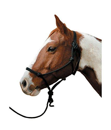 Arab Halter (The Colorado Saddlery Arab Halter and 10-Feet)