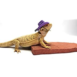Carolina Designer Dragons Bearded Dragon Cowboy Hat, Purple