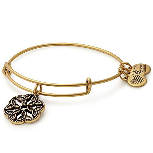 Alex Ani Endless Charm Bangle