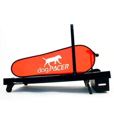 Pacer Treadmill (MiniPacer Treadmill | by Dog)
