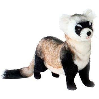 4b67aad9a64 Amazon.com  TY Beanie Babies Runner the Ferret Stuffed Animal Plush ...