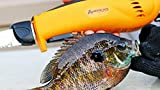 American Angler PRO Electric Fillet