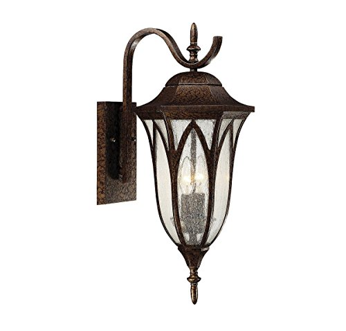 Savoy House 5-1241-56 Dayton 2-Light Outdoor Wall Lantern in New Tortoise Shell - Dayton 2