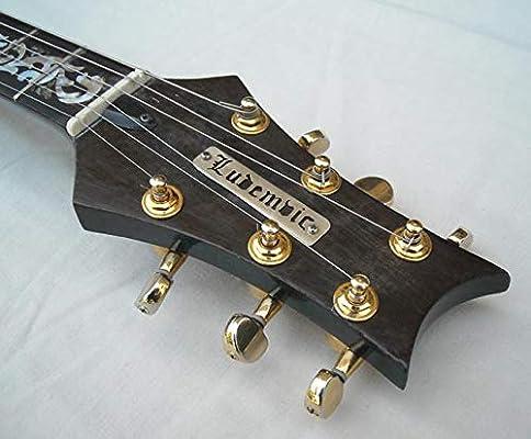 Grasa silicona para guitarra eléctrica, tubo 45 gr.: Amazon.es ...