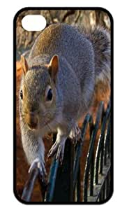 Cool Squirrel Back Case Hard Durable iPhone 4,4s Case