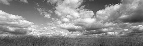 Hayden Prairie, Iowa (Black and White) by Panoramic Images Art Print, 53 x 17 inches (Iowa Art)