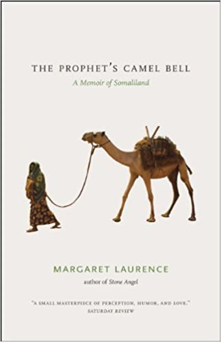 amazon camel