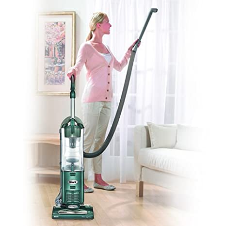 Bed Bath and Beyond Carpet Cleaner