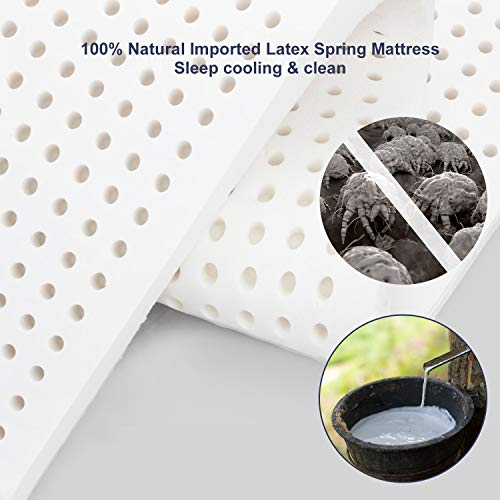 BedStory Queen Mattress, 10Inch Latex Infused Memory Foam and Pocket Spring Mattress, Relieve Stress& Deepen Sleep, Bed Mattress in Small Box, Medium Firm, 10-Year Warranty