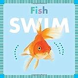 Fish Swim (Amicus Ink Board Books)