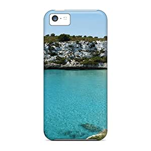 ElenaHarper Premium Protective Hard Cases For Iphone 5c- Nice Design - Plage