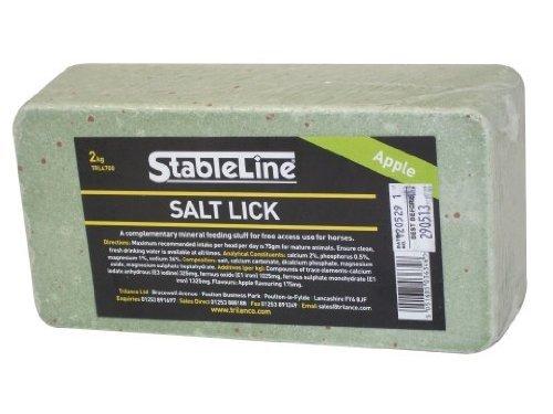 StableLine Salt Lick: Carrot