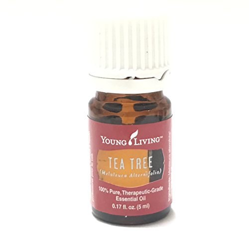 Tea Tree (Melaleuca Alternifolia) Essential 5ml Oil by Young Living Essential Oils