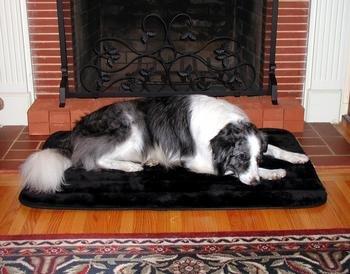 (Precision Pet Pet Sleeper)