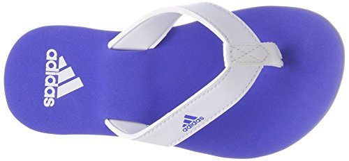 adidas Unisex-Kinder Beach Thong 2 K Dusch-& Badeschuhe Mehrfarbig (Ftwwht/hirblu/ftwwht Cp9378)
