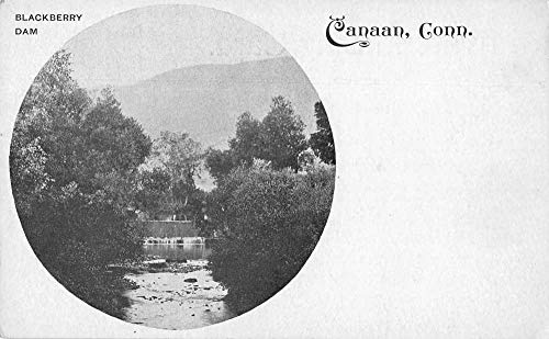 Canaan Connecticut Blackberry Dam Private Mail Vintage Postcard JB627671 ()