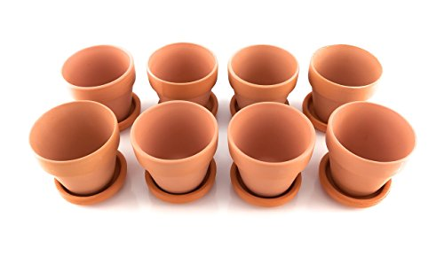 Pennington Terra Cotta Pots and Saucers, Set of 8 (2 Inch, Red)