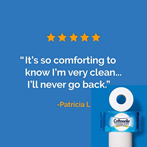 41X%2BhMHn7rL - Cottonelle FreshCare Flushable Wipes for Adults, Wet Wipes, Alcohol Free, 1 Pack of 42 Wet Wipes