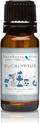[Barnhouse - Eucalyptus - Premium Grade Fragrance Oil (10ml)] (Eucalyptus Spearmint Fragrance Oil)