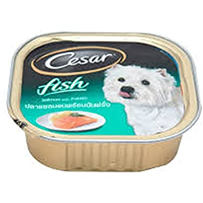 Cesar Dog Food Salmon& Potato 3.50 Oz