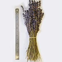 (10 Bunches) Organic Dried Lavender Bunch of Stems Wedding Decoration Bunches by Brow Farm