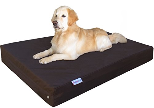 Dogbed4less Jumbo Extra Large Gel Infused Memory Foam Dog Bed with 1680 Ballistic Heavy Duty Cover and Waterproof Liner, 55X37X8 Inches, Seal Brown