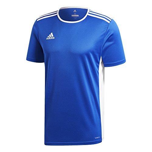 Bold shirt T Uomo white Blue Adidas 18 Entrada wAqzXz
