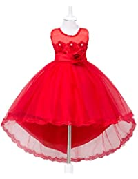 Little/Big Girl Lace Applique High-Low Bridesmaid Birthday Party Gown
