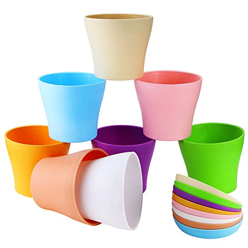 4in plastic pot - 5