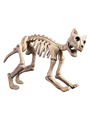 Forum Novelties Birthday Girl Skeleton Cat, Multicolor