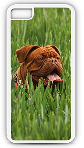 iPhone 8 Case Red Bordeaux Dog French Mastiff Brachycephalic Molossoid Type Customizable by TYD Designs in White Plastic Black Rubber Tough Case