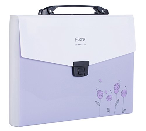 Shuter Accordion Expanding File Folder,13-Pockets,A4 Size,Handle and Tabs,Buckle Closure (Purple)
