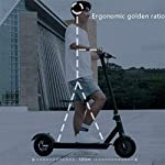 Monopattino-Elettrico-Scooter-Pieghevole-per-Adulti-Display-LCD-10-inch-Motore-da-350-W-28KmE-Roller-velocit-Massima-25KmHFacile-da-Piegare-E-Trasportareper-Adulti-E-Bambini